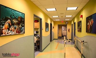 Hastaneler İçin Dekoratif Tablolar 2