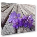 Floral ve Çiçek Tabloları 5
